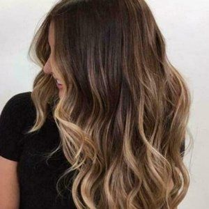 NWOT  Long Ombre Synthetic Wig